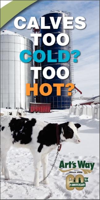 Calves Too Cold?