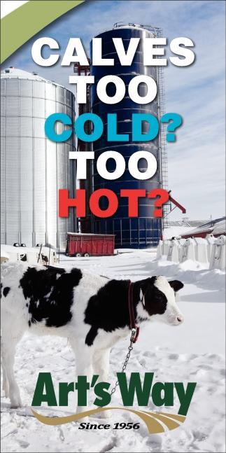 Calves Too Cold? Too Hot?