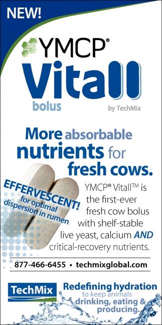 YMCP Vitall Bolus