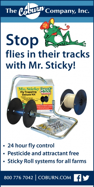 Stop Flies in their Tracks with Mr. Sticky!