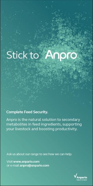 Stick to Anpro