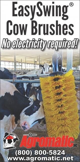 EasySwing Cow Brushes