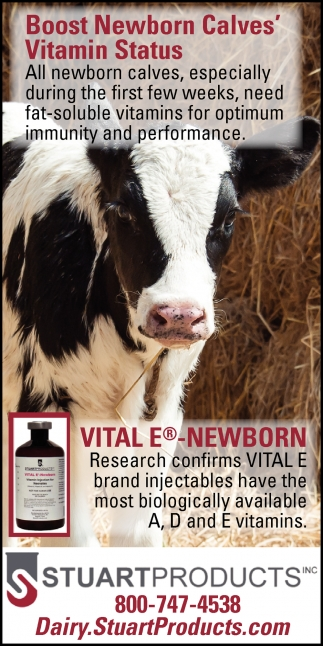 Boost Newborn Calves